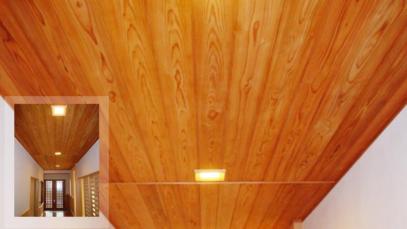 wood-sugi